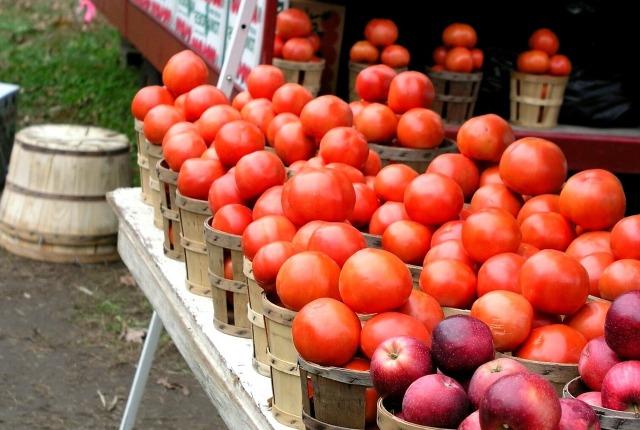Farmers Market Date Night-NoSmallLife