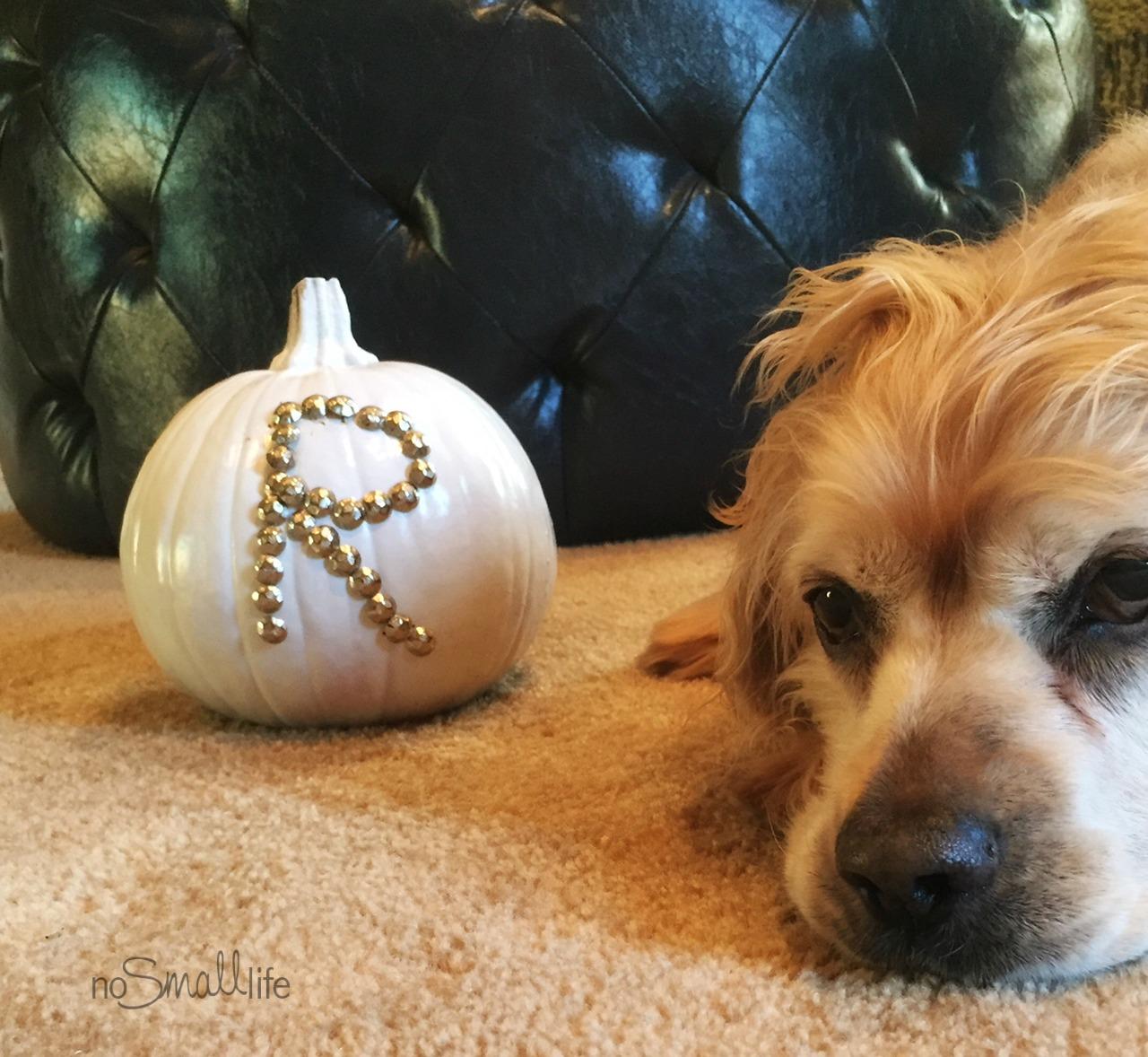 No-Carve Monogram Pumpkins-NoSmallLife