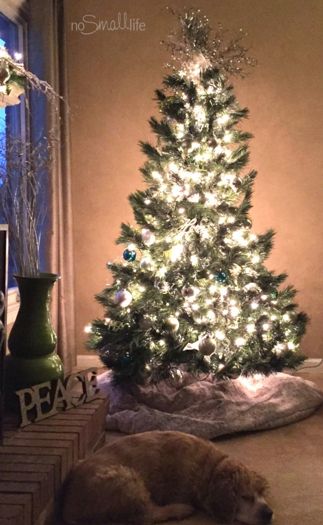 Advent Devos by the Christmas Tree