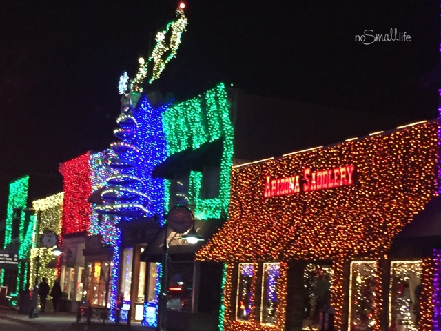 Holiday Lights in Michigan